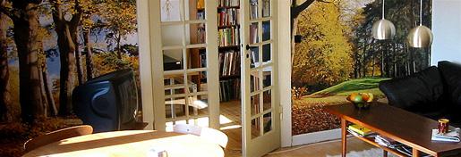 <em>Retro</em> Living Room from our old Apartment