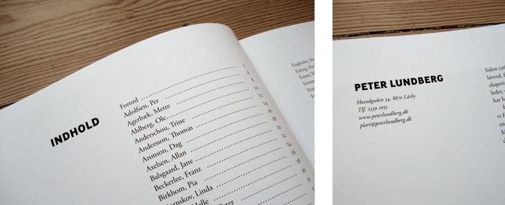Nærbilleder af indholdsfortegnelsen og overskrifter i bogen 101 Kunstnere. Skriften der er brugt til overskrifter er Ministry Bold som er designet af den britsike skriftdesigner Rian Hughes.
