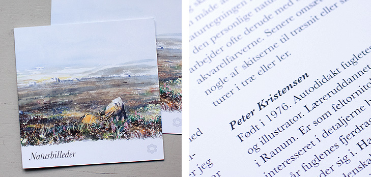 Forsiden fra katalog fra kunstudstillingen Naturbilleder samt close up af typogrfaien ogf det grafiske design fra folderen.