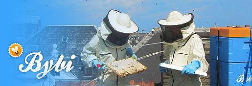 City Bee Association Identity Brush Up
