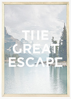 Faunascapes Poster Print The Great Escape
