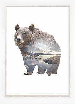 Faunascapes Poster Print Bear