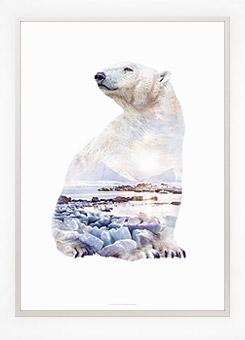Faunascapes Poster Print Polar Bear