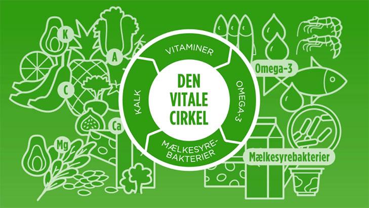 Skærmbillede af titelskærmen fra videoen Den Vitale Cirkel. Baggrunden er grøn og oven på er tegnet en masse forskellige fødevarer. Fødevarerne er tonet lidt ud i baggrunden så der er fokus på overskriften: Den Vitale Cirkel -  som er placeret ovenpå fødevarerne i midten af skærmen.