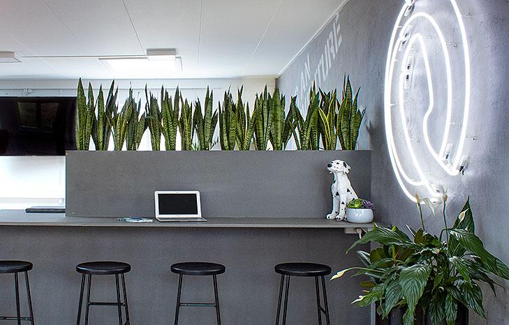 Specialdesignet møbel bygget op i grå MDF. Møblet er formet som et barbord og med løse sorte barstole foran. Oppe på bordet står en indbygget blomsterkasse og på væggen til højre hænger et hvidt neonskilt med firmaets logo. På bordet står en lille statue af en dalmatiner hvalp.
