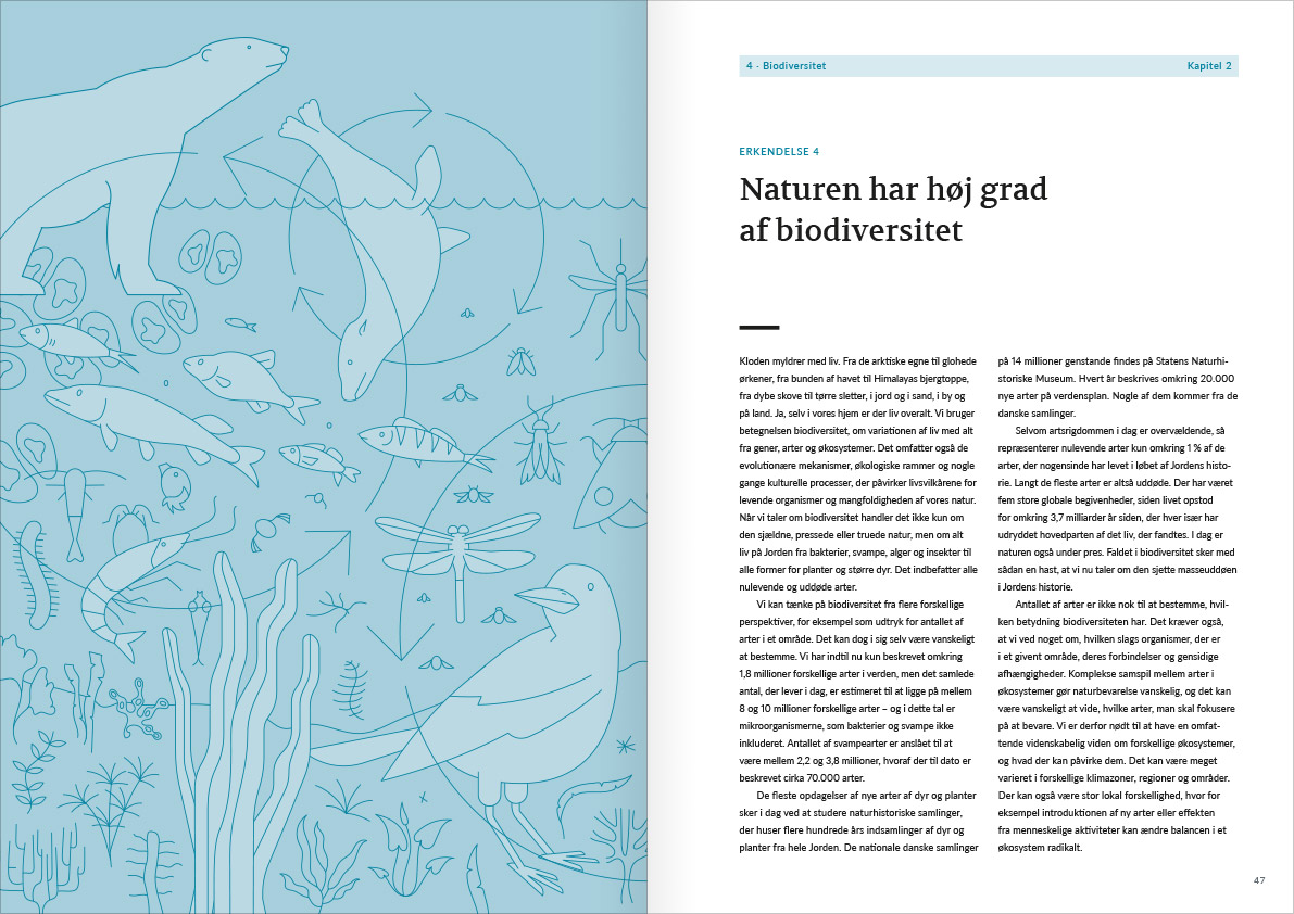 Layout of the spread with page 46 and 47 from Naturvidenskabens ABC. The spread is the introduction to acknowledgement number 4: Biodiversity. The Left page is a big illustration with different animals. The animals in focus are a polar bear, a seal and a big crow. There is also some small fish, insects and some fish.